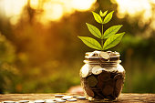 istock Coins in glass and stack coins with tree for business. 680188152