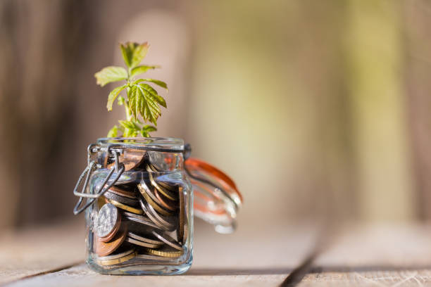 Coins in glass jar on wooden table with growing plant stock photo