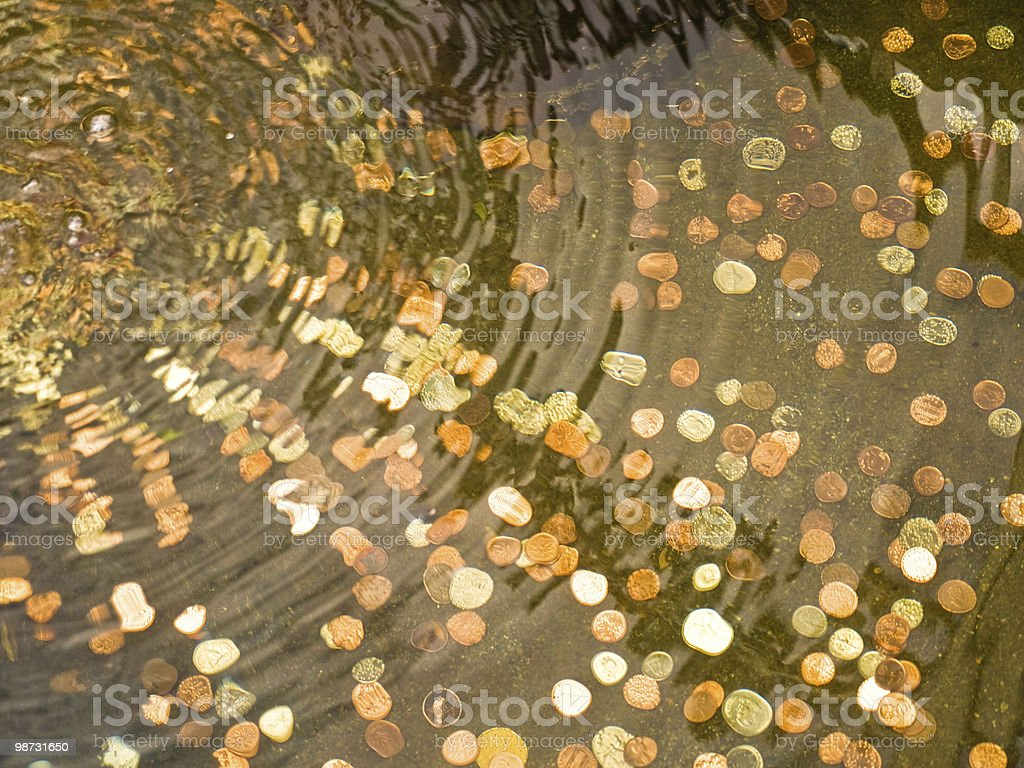 Coins in the garden pool royalty-free stock photo