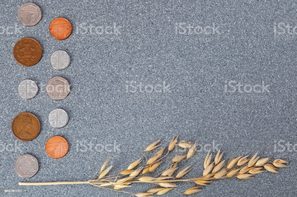 Coins of the Great Britain and an ear of barley on a background of gray granite. zbiór zdjęć royalty-free