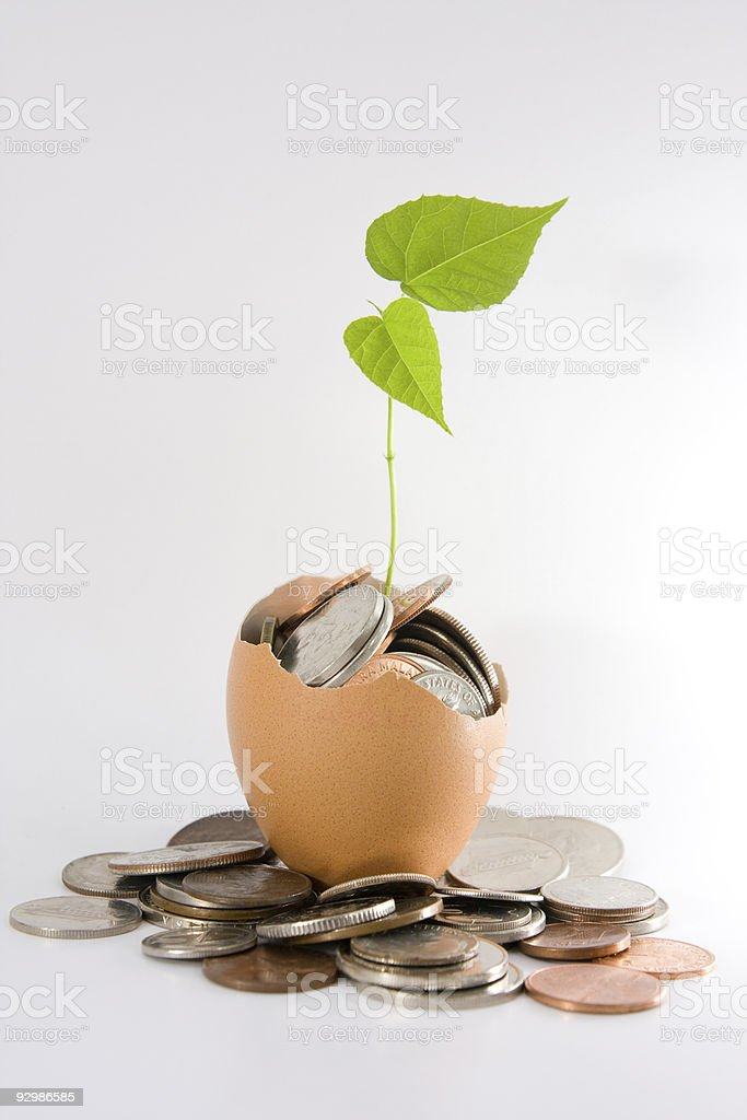 Coins, plant & egg stock photo