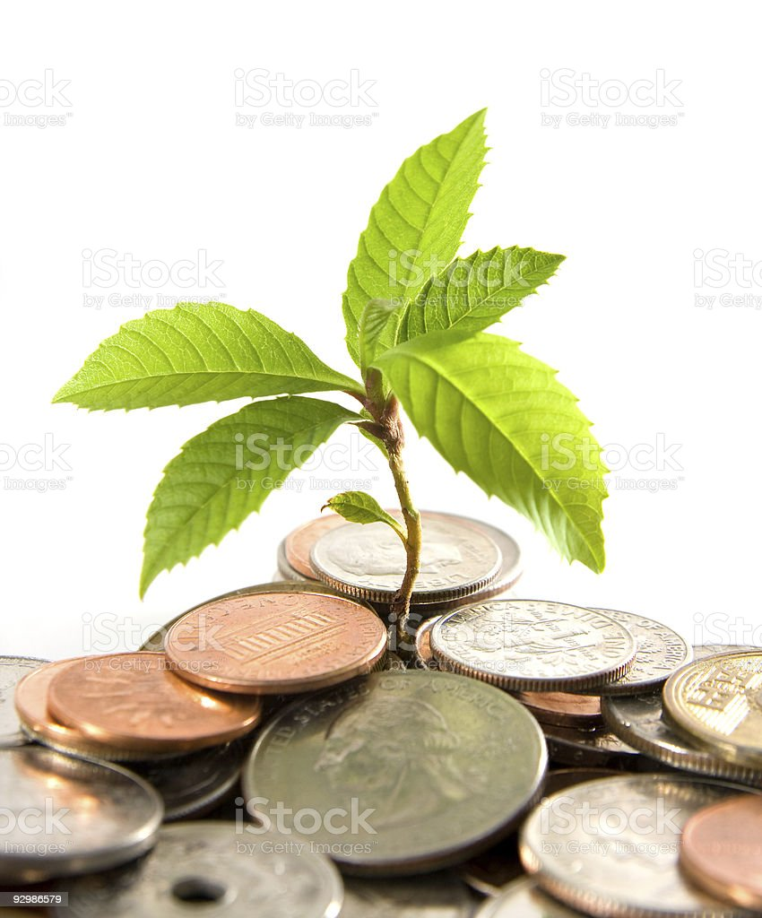 coins & plant stock photo