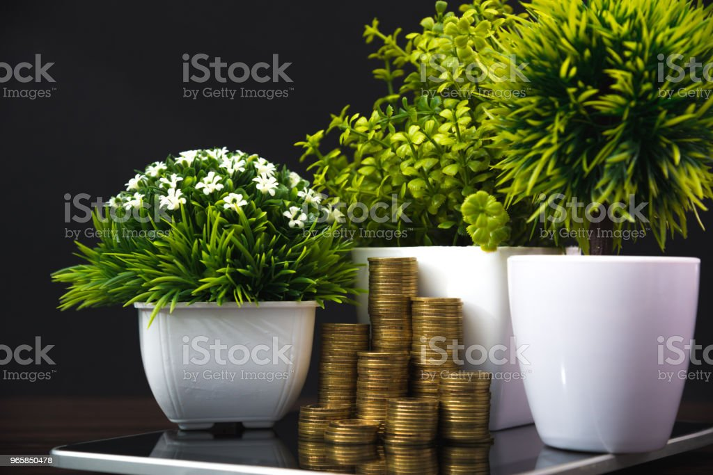 Munten stacks en kleine boom of bloem boeket in witte vaas met tablet computer planning visie en Financiën analyse bedrijfsconcept. - Royalty-free Accountancy Stockfoto