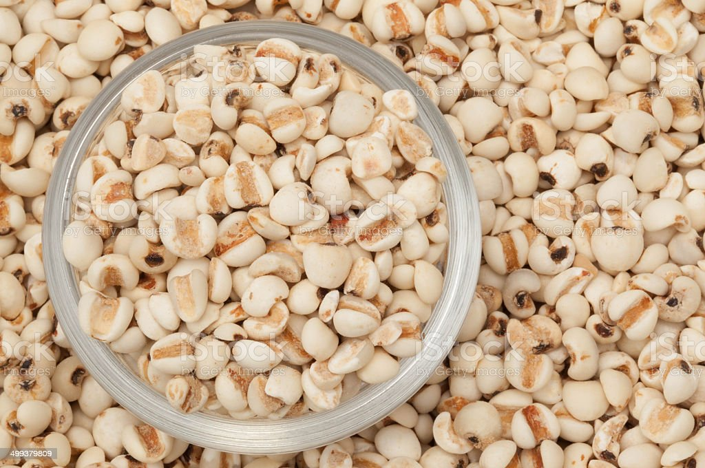 Coix seed close up stock photo