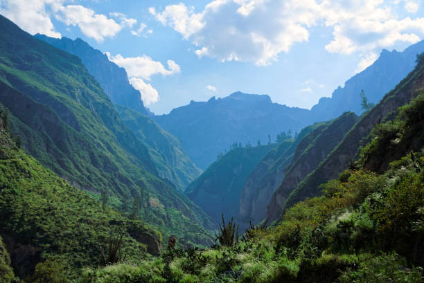 Colca Canyon in Arequipa Region stock photo