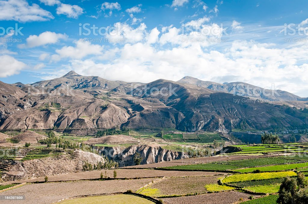 Colca Canyon in Peru stock photo