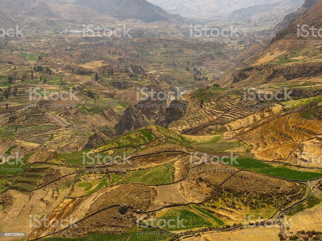 Colca Canyon, Peru royalty-free stock photo