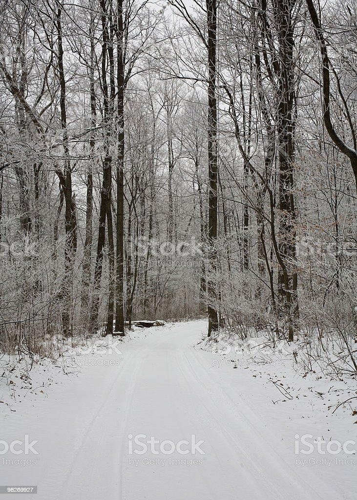 cold drive royalty-free stock photo