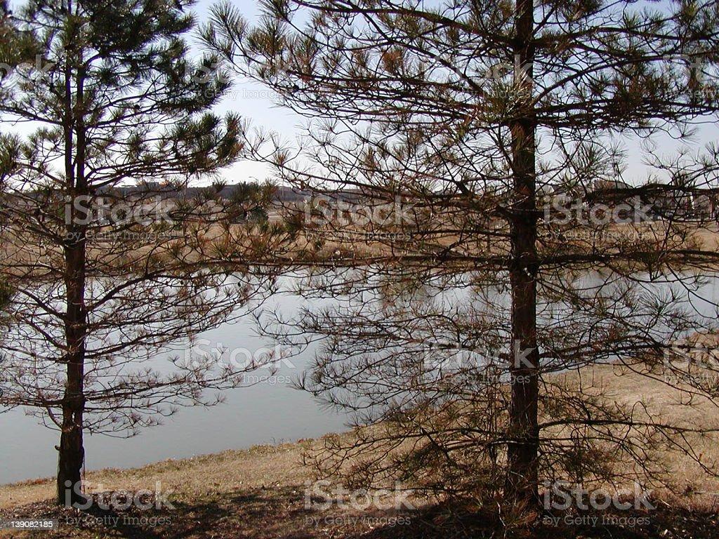 Cold Kansas Winter - Lake royalty-free stock photo