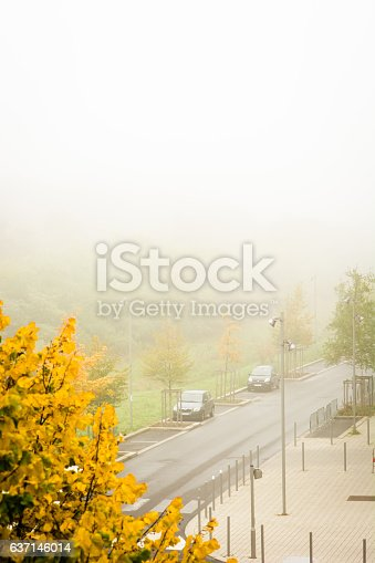 The fog partially covers an urban park