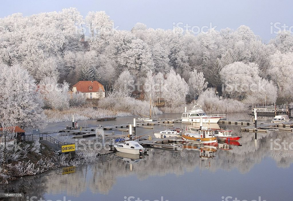 Cold morning royalty-free stock photo