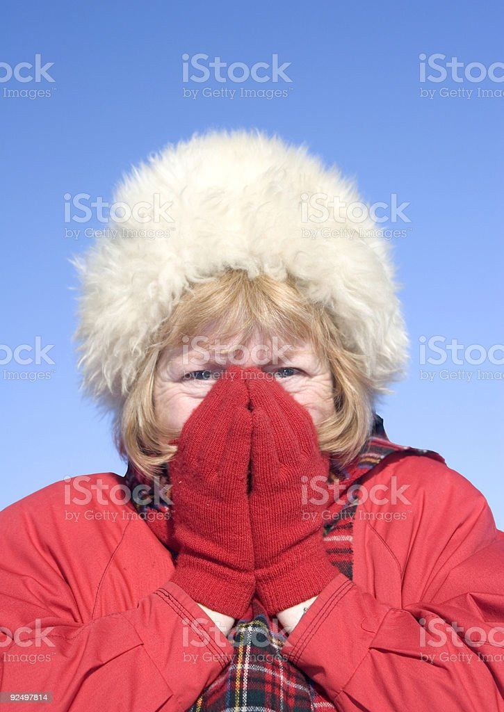 Cold nose royalty-free stock photo