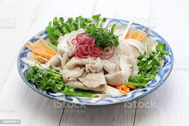 Cold pork salad japanese summer cuisine picture id586696812?b=1&k=6&m=586696812&s=612x612&h=frmzvklx18qaub h3rfqiskvoz8rcydsv8i5vhar3ve=
