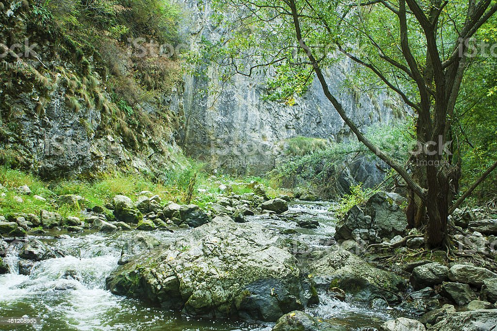 Cold river in mountains of Transylvania stock photo