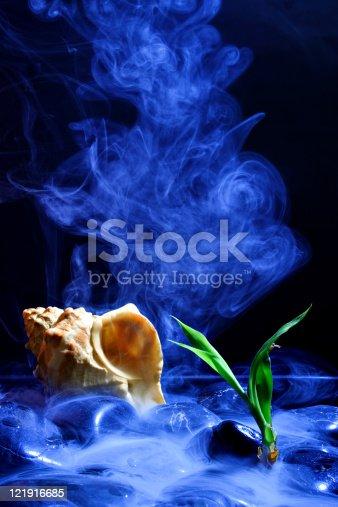 istock Cold scene bamboo and seashell 121916685