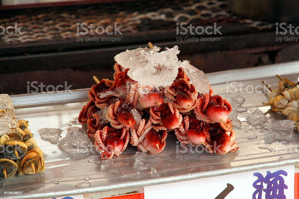 Cold Squid royalty-free stock photo