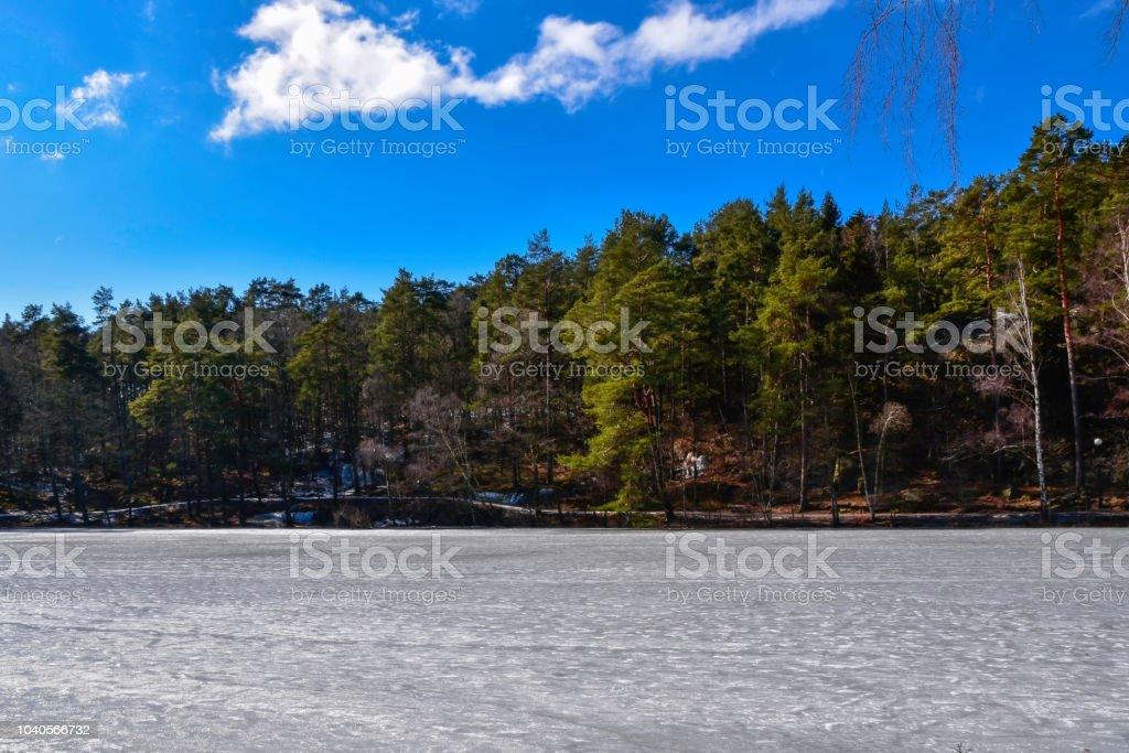 Cold sunny day at the pond stock photo