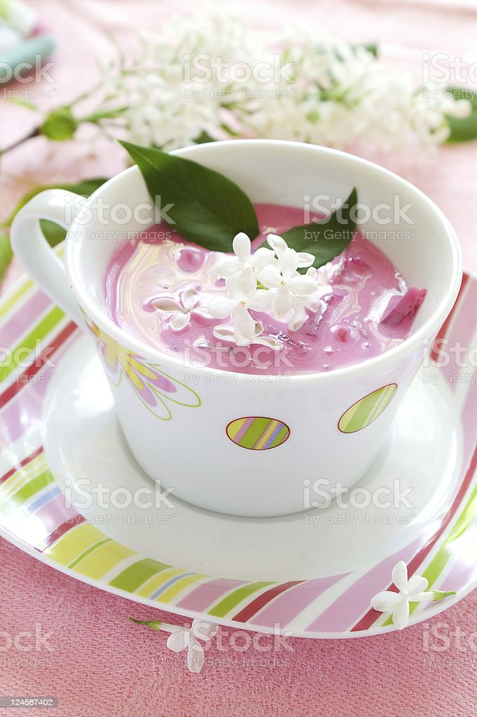 Cold vegetbale soup royalty-free stock photo