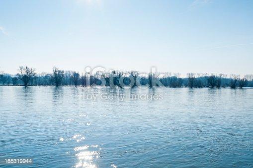 Kalte Wintertage Auf Dem Rhein Stock-Fotografie und mehr Bilder von Baum