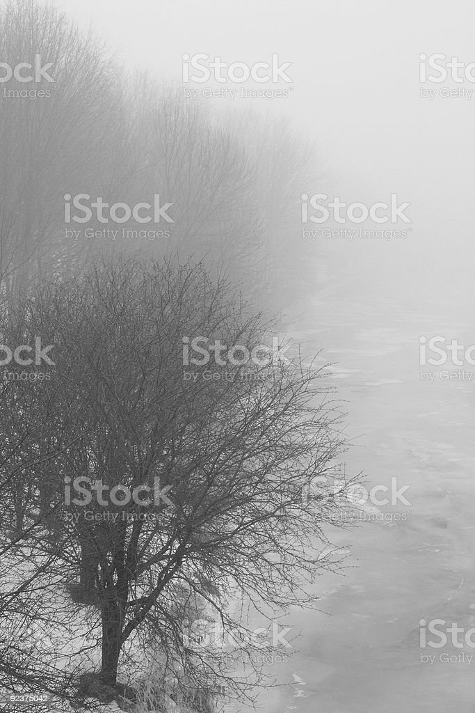 Cold Winter Fog royalty-free stock photo