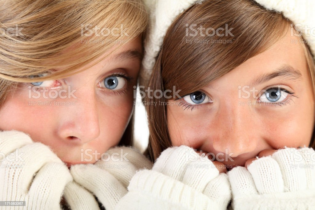Cold winter royalty-free stock photo