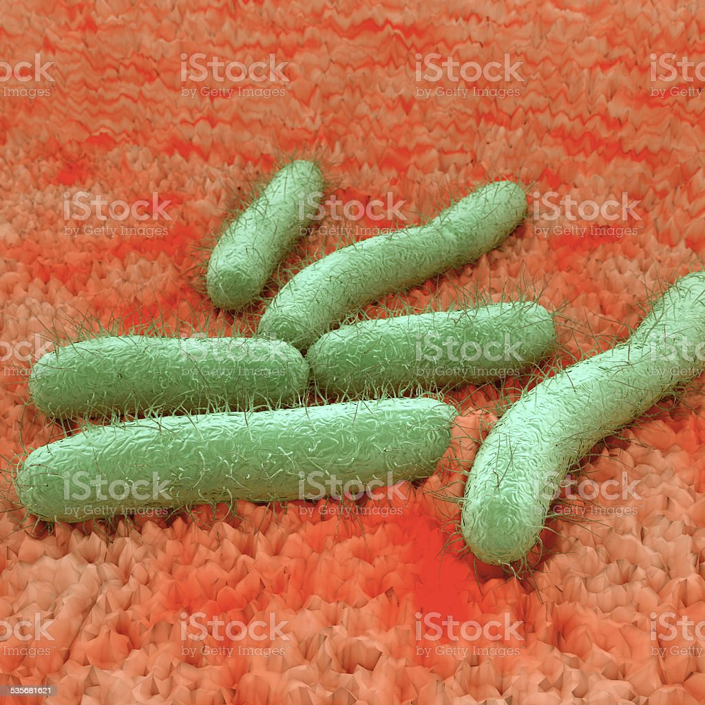 E. Coli Bacteria On Tissue stock photo