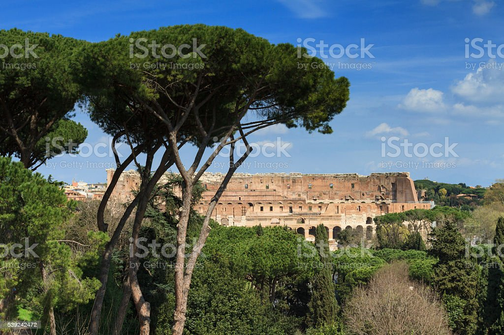 Coliseum as seen from the Palatine hill royalty-free stock photo