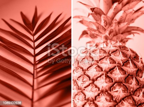 1147995495 istock photo Collage in the color of the year 2019 coral color. 1089402638