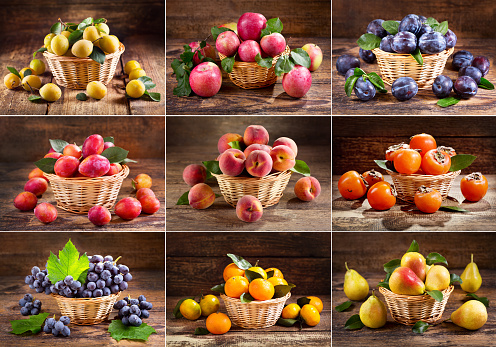 collage of fresh fruits in a basket