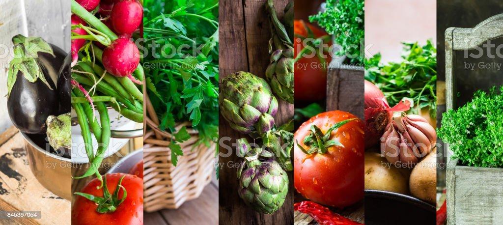 Collage set fresh organic vegetables herbs. Ripe tomatoes, radish, green beans, artichokes, thyme, parsley, egglants. Summer, autumn fall harvest, farmer's market, organic produce. stock photo
