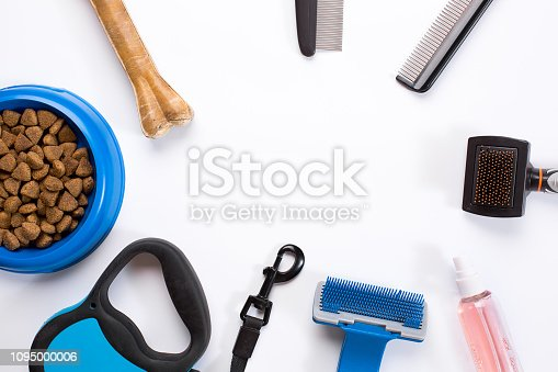 Collar, blue bowl with feed, leash, delicacy, combs and brushes for dogs. Isolated on white background. Top view. Still life. Copy space