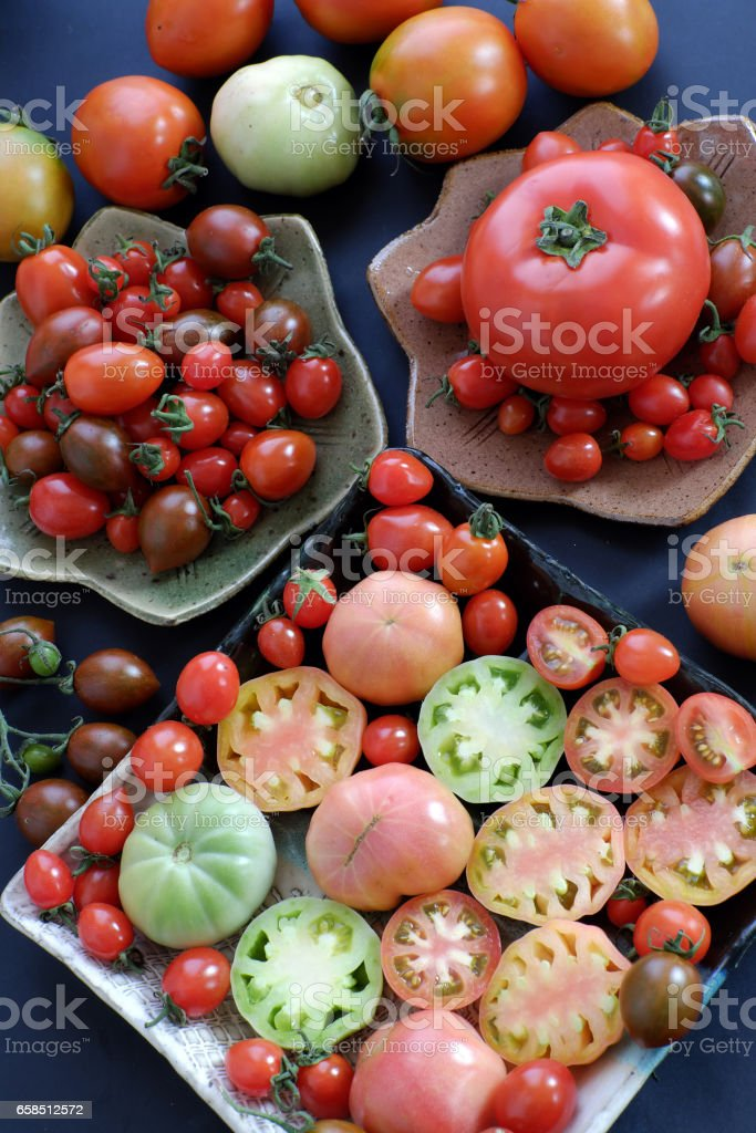 Collect of tomatoes, cheap food anticancer stock photo
