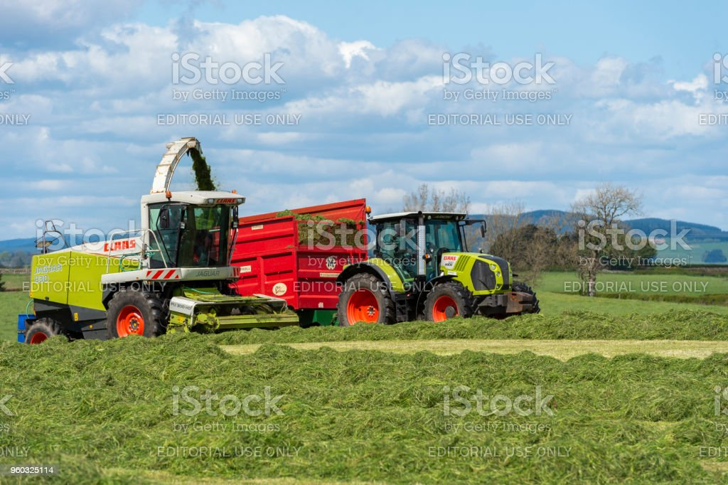 Collecting cut grass in a field on a Scottish farm stock photo