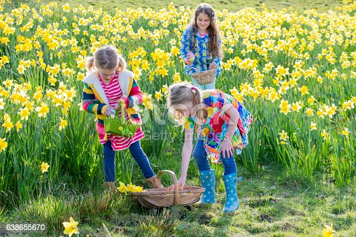 istock Collecting Easter Eggs 638655670