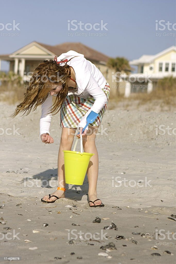 Collecting Shells on the Beach royalty-free stock photo