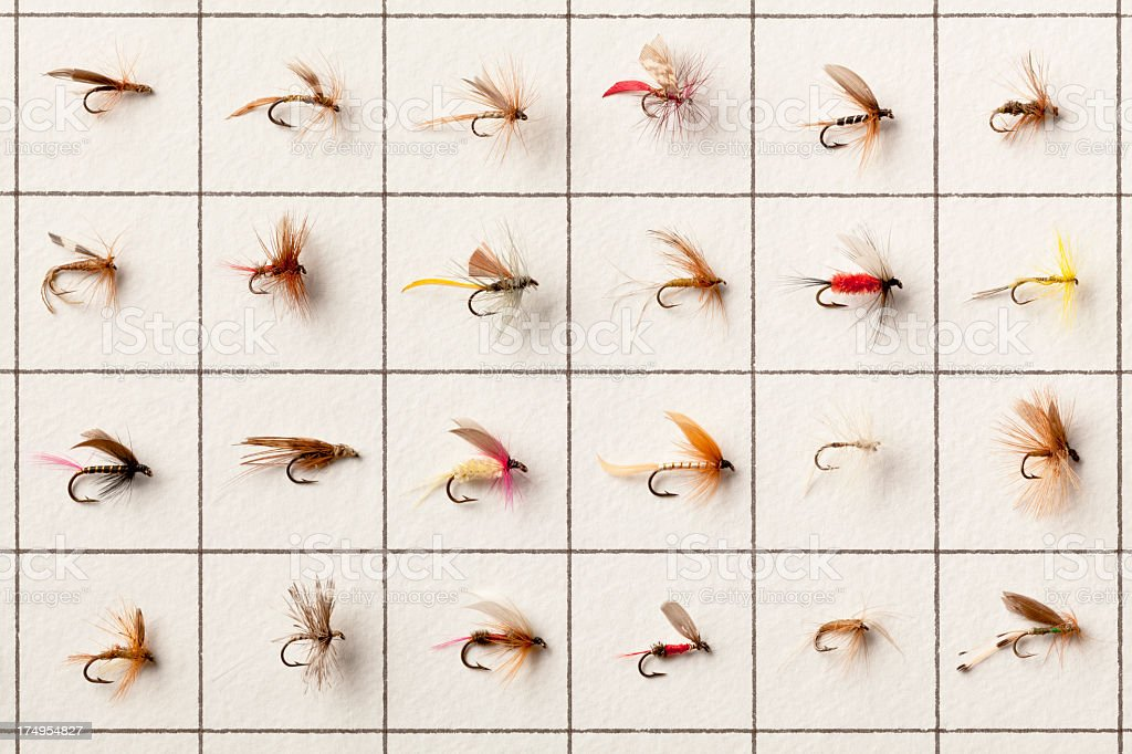 Collection of 24 Vintage Fly-Fishing Flies. stock photo