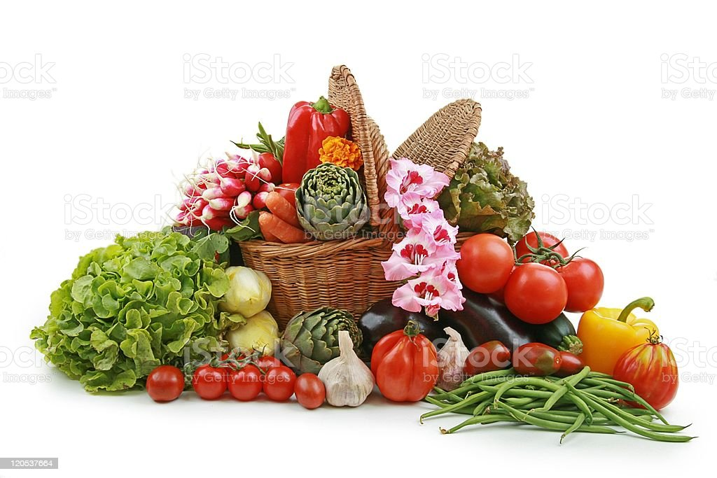 A collection of a variety of colorful vegetables royalty-free stock photo