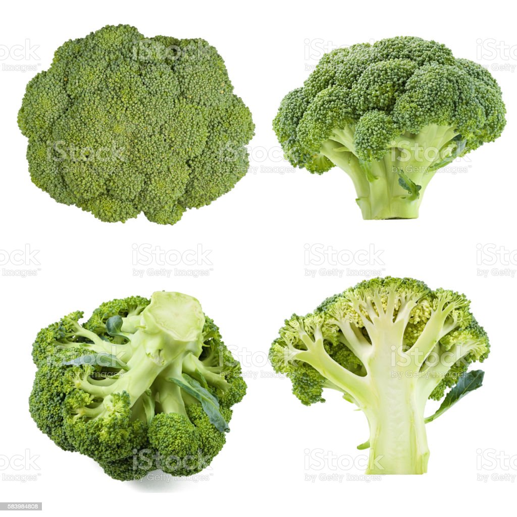 collection of broccoli isolated stock photo