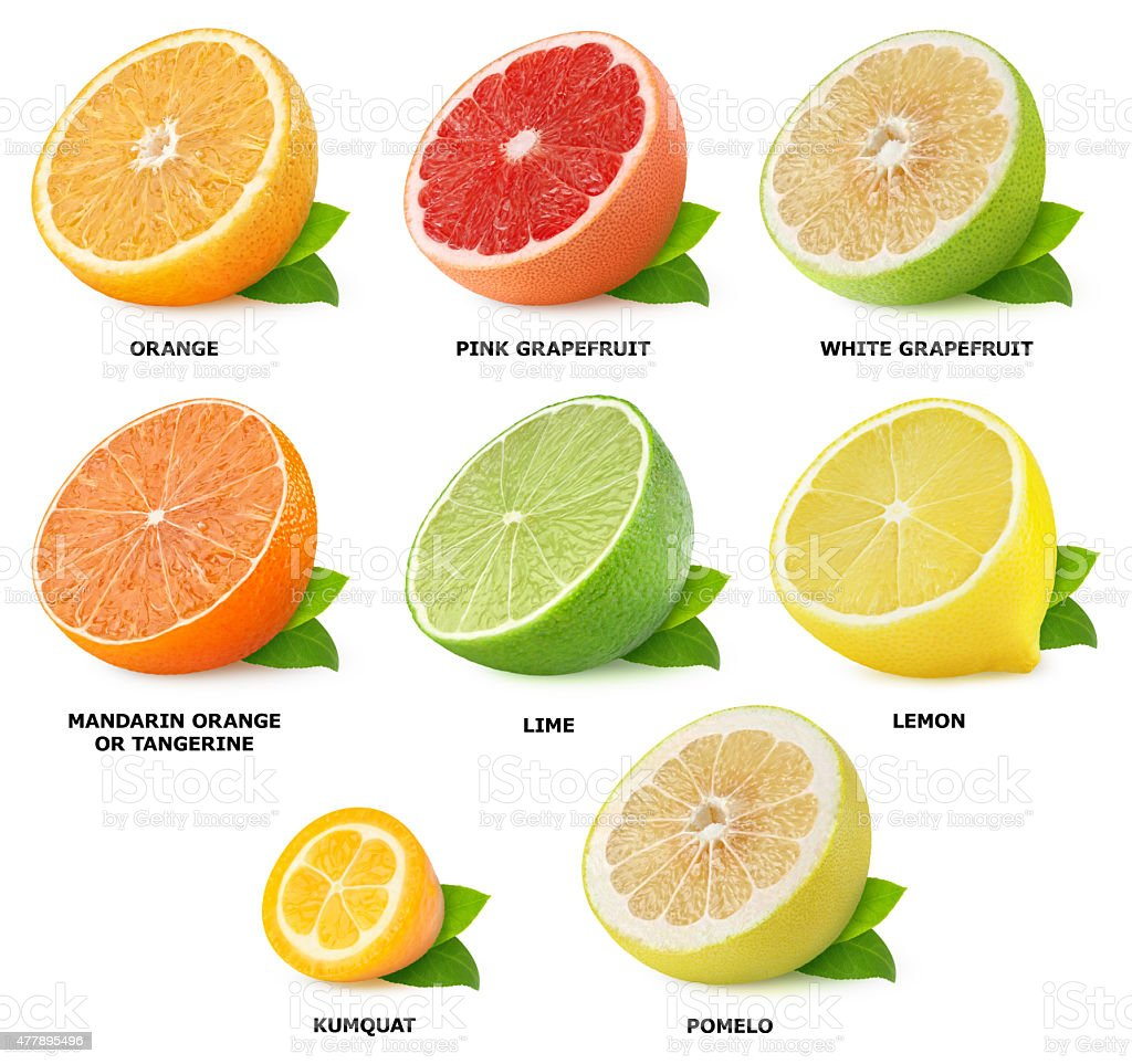 citrus fruits fruit vegetables names halves collection food grapefruit isolated vegetable foods pomelo english orange lemon sweetie benefits lime language