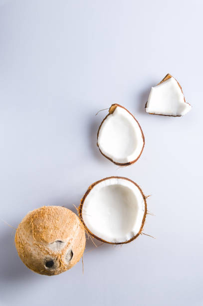 Collection of coconut pieces isolated on a white background stock photo