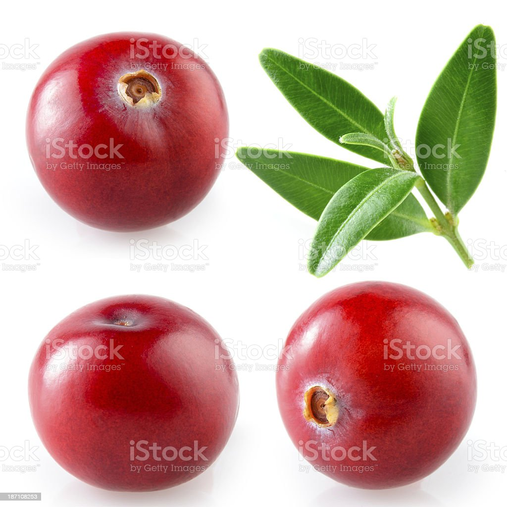 Collection of cranberries and leaves isolate on white stock photo