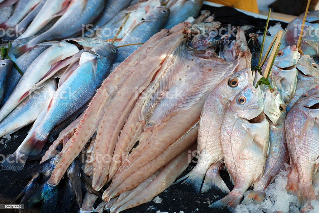 Collection of Fish at the Jetty royalty-free stock photo