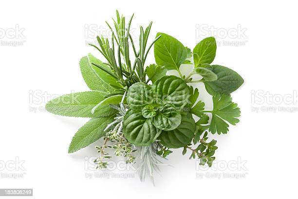 """Collection of fresh herbs. Rosemary, sage, mint, savory, thyme, everlasting, parsley. To see more Leaves images click on the link below:"""