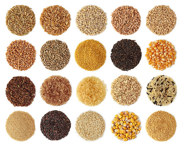 Collection of grains shaped in small circles Cereals collection isolated on white background rice cereal plant stock pictures, royalty-free photos & images
