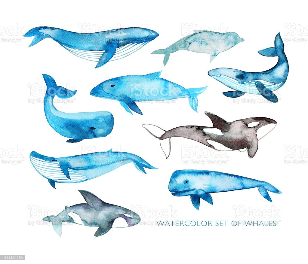 Collection of hand drawn watercolor whales. stock photo