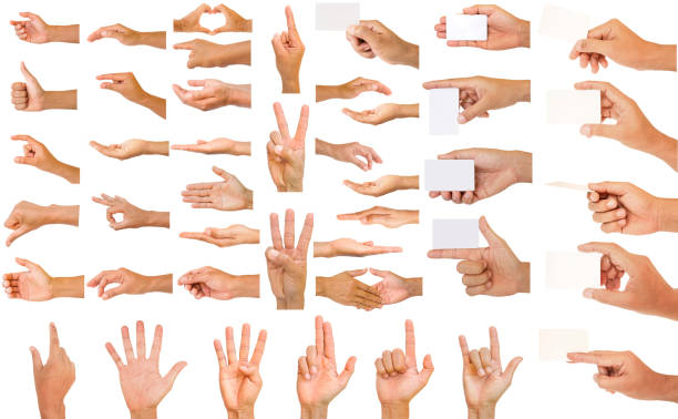 collection of hands stock photo