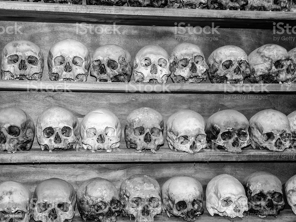 Collection of Human Skulls stock photo