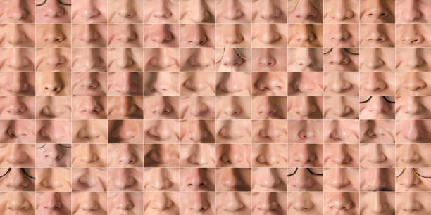 collection of images of human noses of men and women forming a texture - alejomiranda stock pictures, royalty-free photos & images