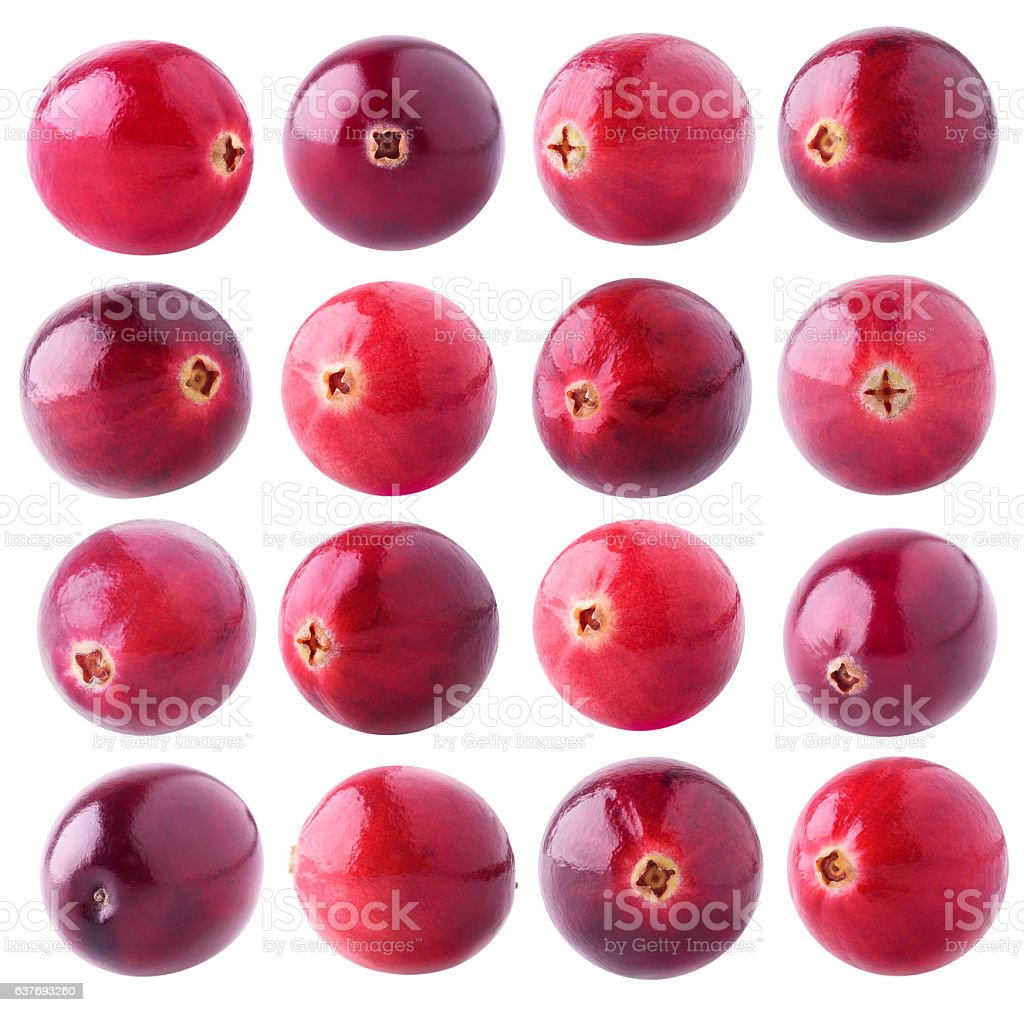 Collection of isolated cranberries stock photo