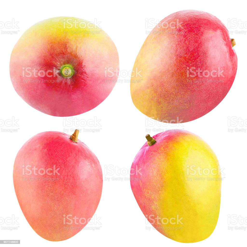 Collection of isolated whole mango fruit - foto stock